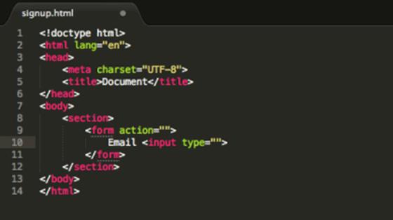 form-input