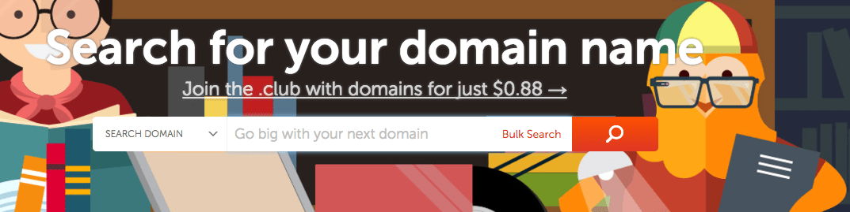 Choose domain name on NameCheap