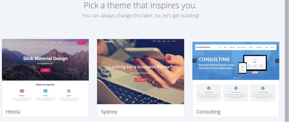 WordPress choose a theme
