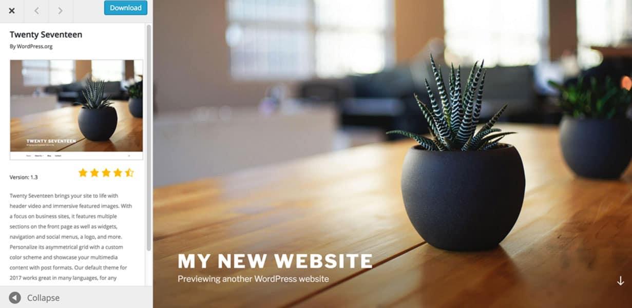 Basic WordPress website