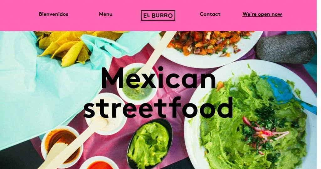 El Burro website color schemes example