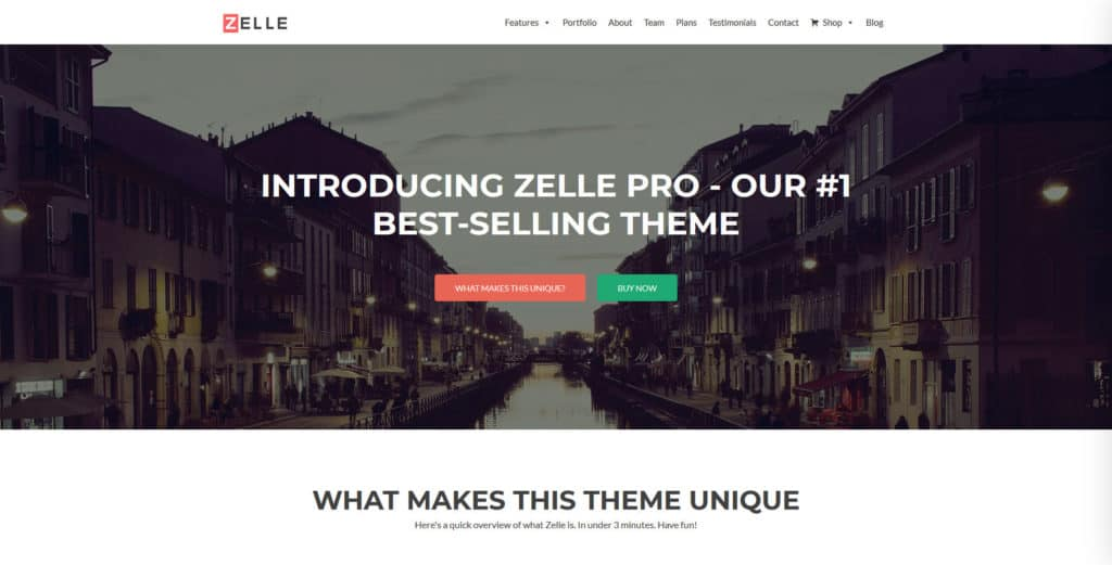 The 27 Best WordPress Themes (Fully Customizable & Multi