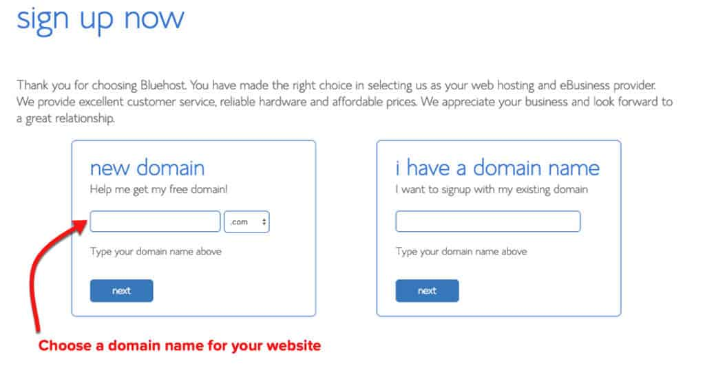 Bluehost choose a domain name