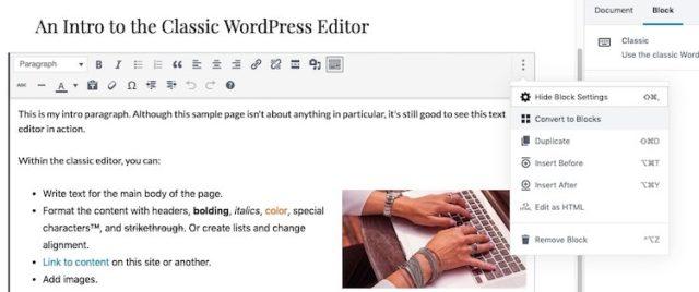 How to Use Gutenberg (WordPress Editor) - websitesetup org