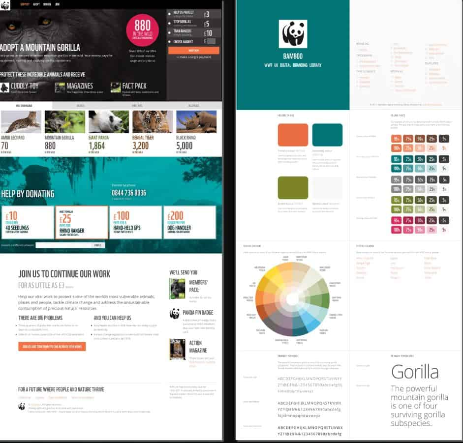 Creative Digital Designer, Andy Clarke, used highlight colours effectively in his work with WWF.