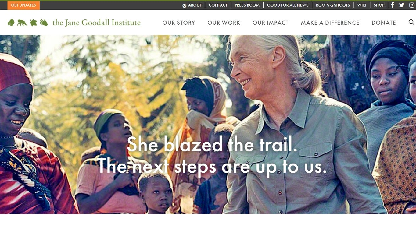 A website to create is for non-profit organizations. The example is of the Jane Goodall Institute.