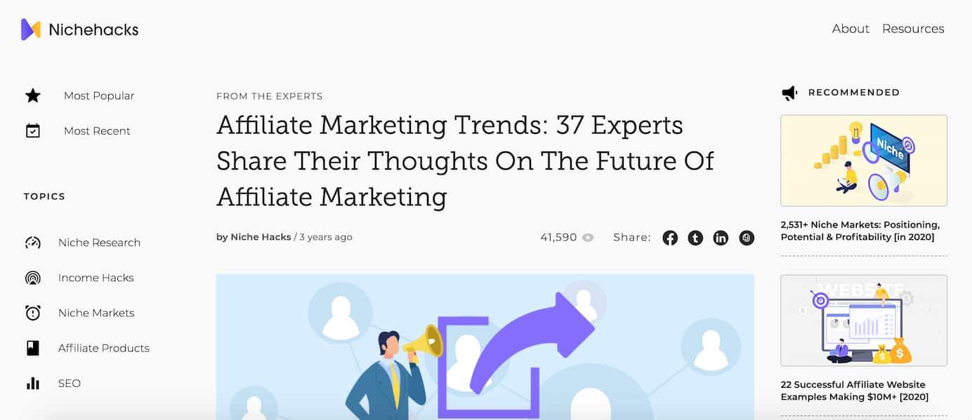 Niche hacks affiliate marketing expert round up