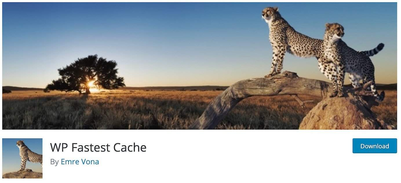 WordPress plugins for caching: WP Fastest Cache